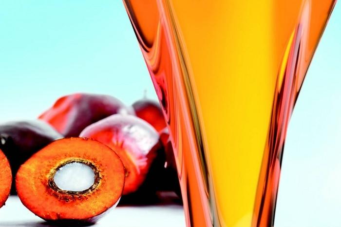 Красное пальмовое масло: польза и вред, советы по применению