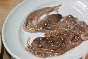 Живой осьминог