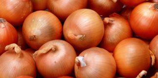 Репчатый лук польза и вред калорийность способы приготовления
