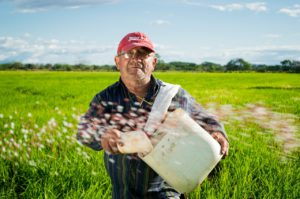 Заражение продуктов пестицидами