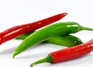 Перец чили вред и польза калорийность применение