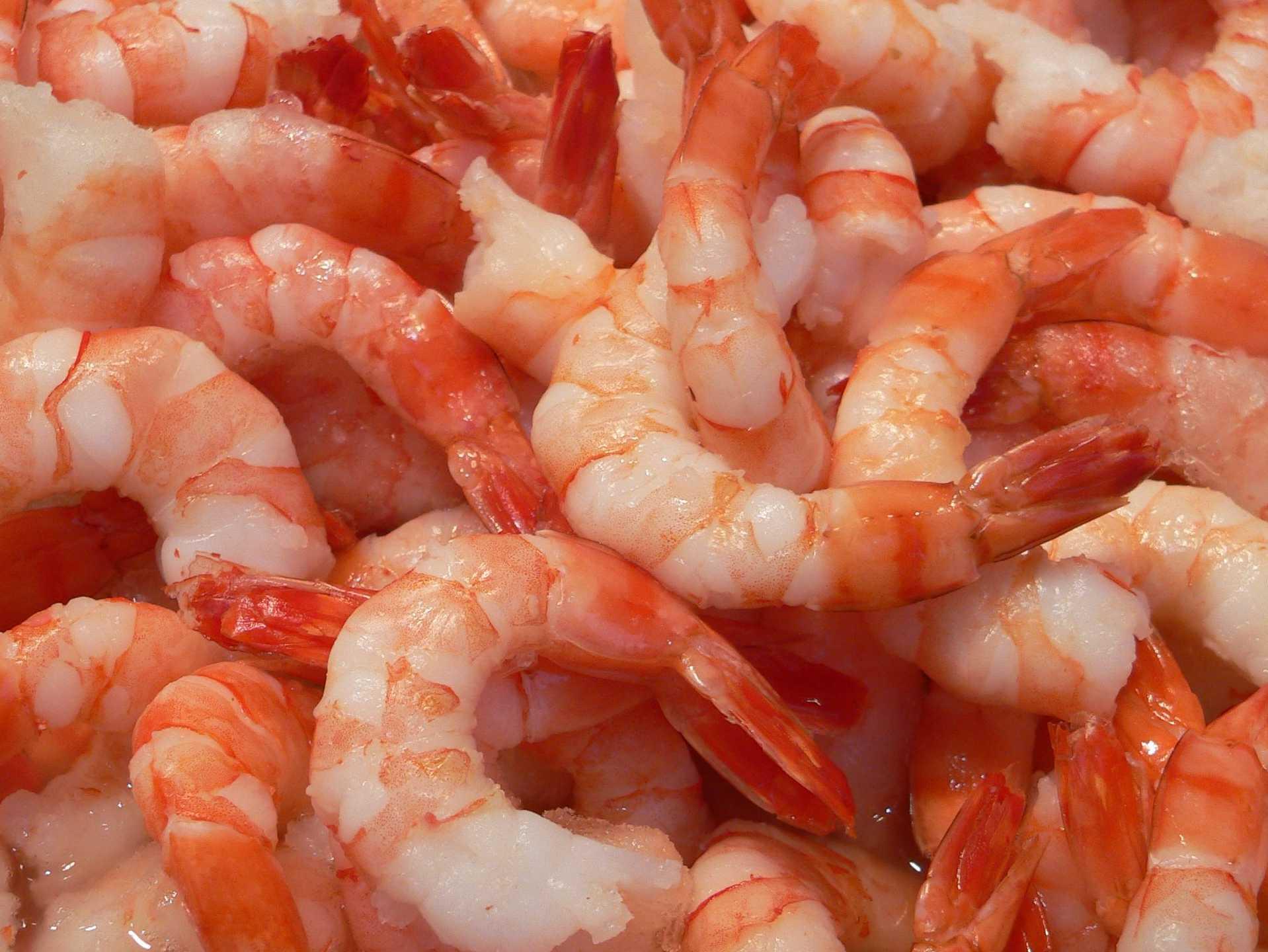 Креветки: польза и вред, калорийность