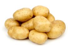 Картофель польза и вред, калорийность, способы приготовления