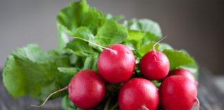 Редис польза и вред калорийность