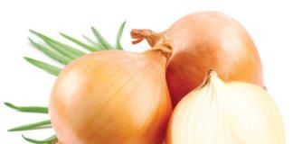 Лук польза и вред калорийность способы приготовления
