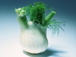 фенхель польза и вред калорийность