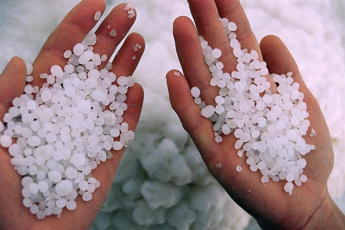 Соль: технологии добычи, виды и использование в кулинарии