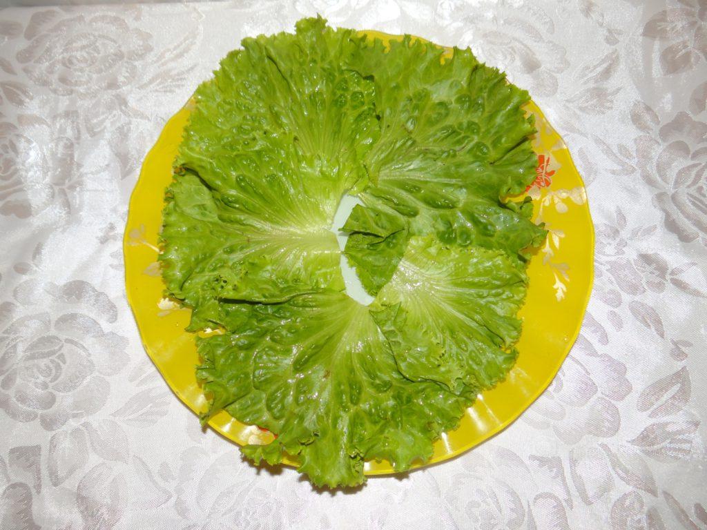 листья салата для мимозы