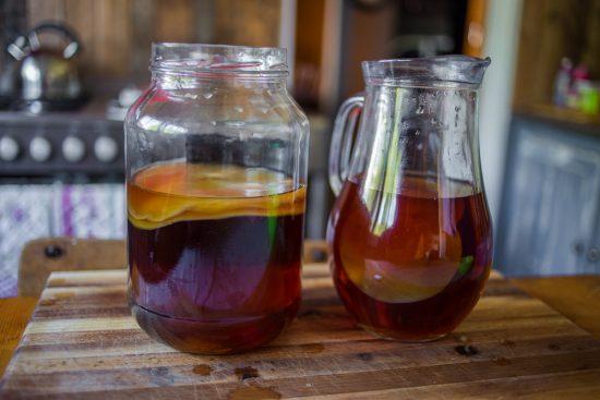Как вырастить чайный гриб в домашних условиях и ухаживать за ним?
