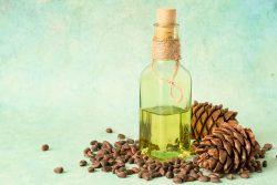 Кедровое масло: польза и вред, советы по применению