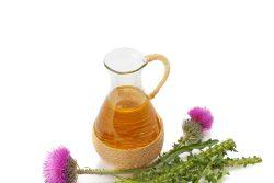 Масло расторопши: польза и вред, советы по применению