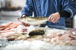 Чем можно заразиться от рыбы
